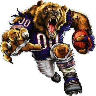 7cbc2f7406e71e636b459c73c35d38d2--nfl-chicago-bears-bears-football