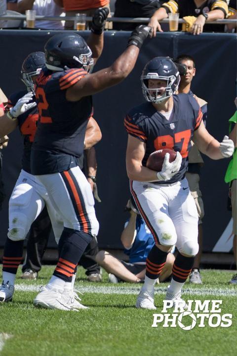 bears vs pitt 5